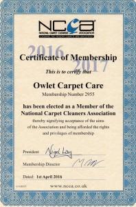 Owlet Carpet Care NCCA 2016