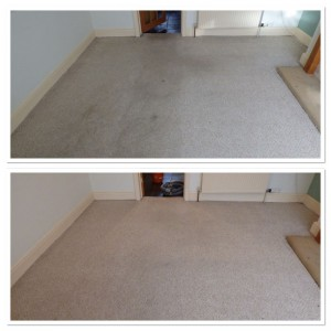 carpet cleaning leeds 1