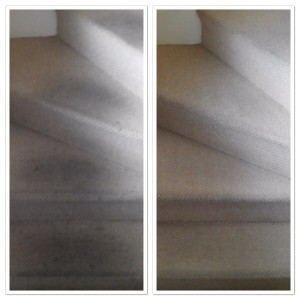 carpet cleaning leeds 3