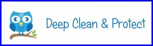 carpet and upholstery cleaning owlet carpet care clean and protect